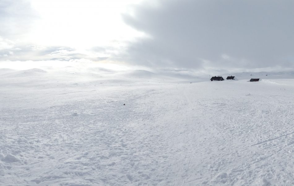 Panorama of hardangervidda mid-winters